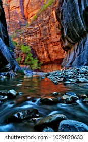 A hiking trail called The Narrows in the Zion National Park. The river is the Virgin river.