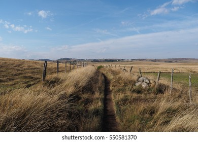 Hiking trail : the Camino de Santiago in the Aubrac region, France