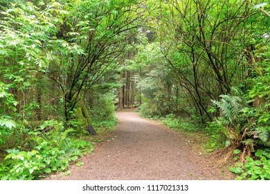Hiking trail at Fort Clatsop along Lewis and Clark River in Oregon