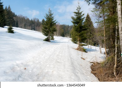 "Hiking trail from ""Hurka"" to ""Prasily"" in Sumava mountains, National park. Early spring with snow on a sunny day. March, Czech republic, Europe."
