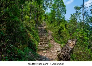 Hiking trail at the jungle, Lower Himalayan Range in Pokhara, Nepal
