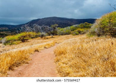 """Hiking trail leading back to Hulopo""""e Beach from the Table Rock on the island of Lanai, Hawaii."""