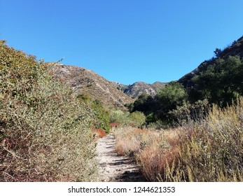 Hiking trail leading through a canyon in the mountains, California