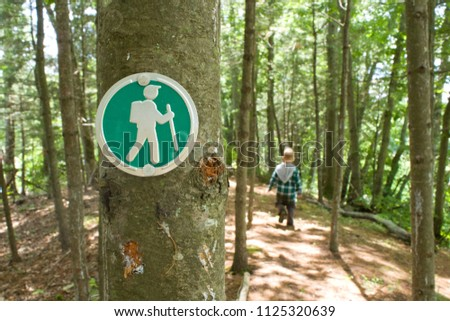 Hiking Trail Marker on a Tree in the Woods with Kids on a Hike in the Background