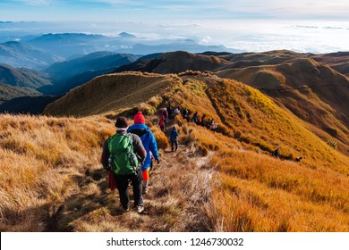 Hiking trail in Mount Pulag, the second highest peak, in the Philippines