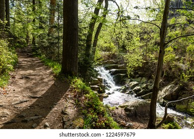 Hiking trail next to waterfalls in the forest