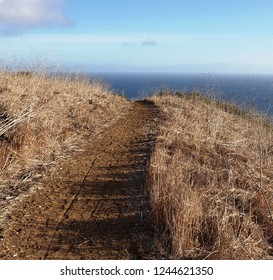 Hiking trail with ocean view, California