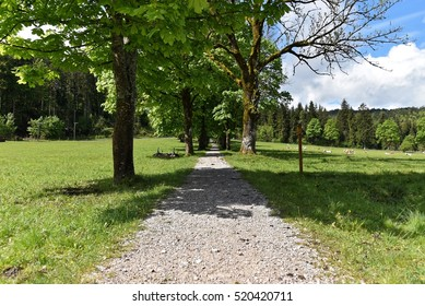 Hiking trail over a meadow near Grainau - Germany