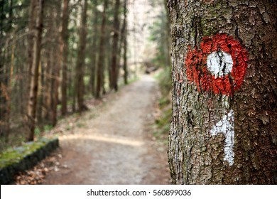 Hiking trail red and white circular mark on tree bark. Trail number one written underneath. Medvednica nature park next to Zagreb, Croatia. Shallow dept of field effect.