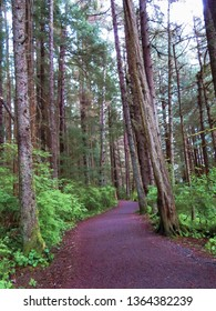 Hiking Trail in Sitka, Alaska through Sitka Alaska National Historic Park