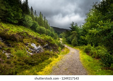 Hiking Trail Through Scenic Forest Landscape On The Isle Of Skye In Scotland