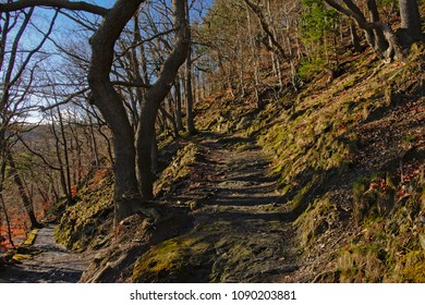 Hiking trail uphill in a sunny spring forest in Ardennes, Spa, Belgium