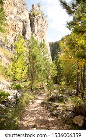 Hiking trail in the woods with rock outcropping and rocks on the trail on a sunny day in autumn