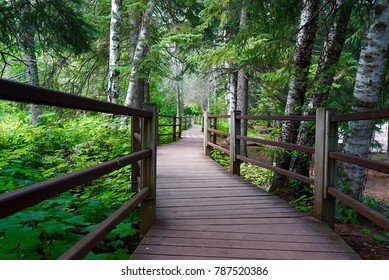 Hiking Trails at Gooseberry Falls State Park in Northern Minnesota