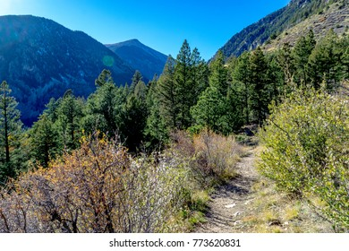 Hiking Trails - Mount Shavano and Tabaguache Trail in San Isabel National Forest - Salida, Colorado