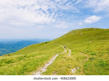 Hiking trails on mountain and wild flowers