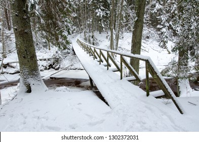 Hiking trails through the winter forest ober the small bridge. Beautiful winter landscape with big snow.