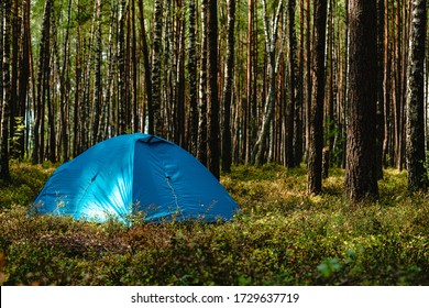 hiking travel life style passion concept picture of tent camp side place in forest, hiking concept Adventures Camping tourism pine forest Travel