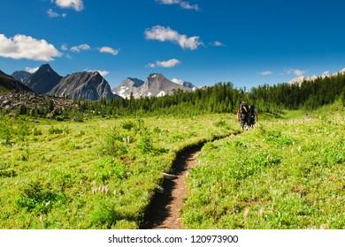 Hiking views Kananaskis Lakes area Peter Lougheed Provincial Park.
