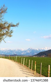 Hiking way in the beautiful alpine upland in spring, Allgäu, Bavaria