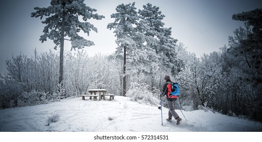 Hiking at winter time, forest