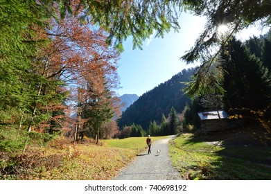 HIKING WOMAN WITH HER DOG WALKING IN THE BEAUTIFUL OBERSTDORF ALPS IN AUTUMN