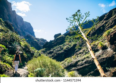 Hiking woman in the mountains. Masca valley, Tenerife, Canary islands, Spain. Active vacation concept