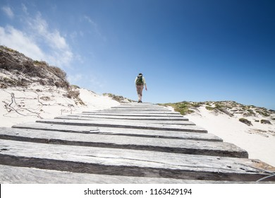 hiking woman on a wooden jetty in the white sand dunes of de Hoop Nature Reserve, whale route, South Africa