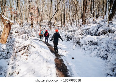 Hiking women in the snow covered forest. The view from Orange hiking trail around the gold course in North Park, Allegheny County, near Pittsburgh, Pennsylvania, USA