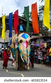 HIKKADUWA, SRI LANKA - SEPTEMBER 8, 2013 : A ceremonial elephant parades along the coast road during the Hikkaduwa perahera on the east coast of Sri Lanka.