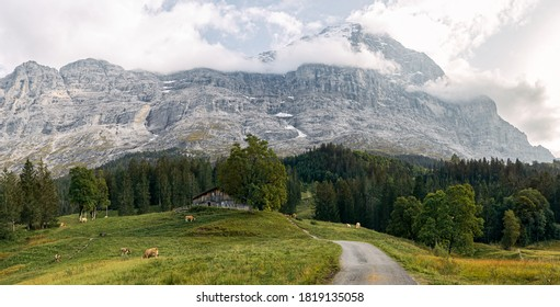 hikking with view to the Eiger-Nordwand in switzerland