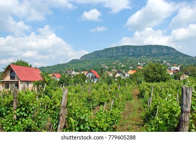 Hill of Badacsony in Hungary