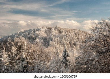 hill covered by frozen forest during freezing winter day with blue sky and clouds - Orol hill from Mala Raca hill in Kysucke Beskydy mountains on slovakian - polish borders