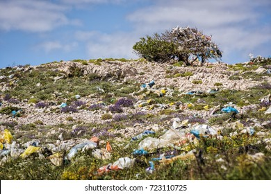 Hill covered with plastic bags and trash