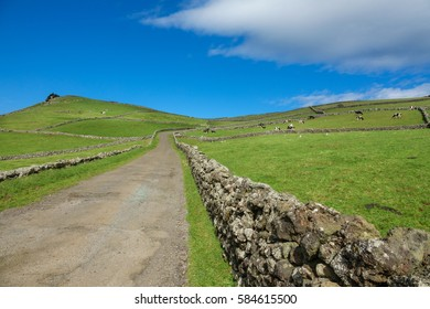 Hill of farm fields in the Terceira island in Azores with blue sky and road