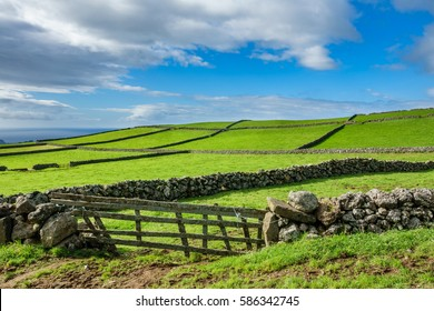 Hill of farm fields in the Terceira island in Azores with blue sky