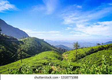 Valparaiis a hill stationin theCoimbatore distofTN, India. It is located 3,500 feet above sea level on theAnaimalai Hillsrange of theWestern Ghats,at a distance of 100 km fromCoimbatore.