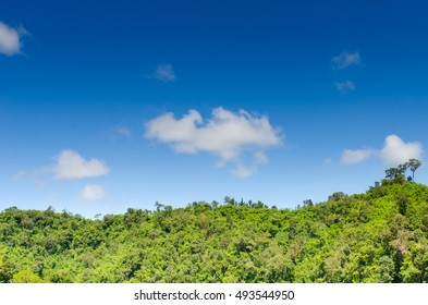 hill with jungle with Blue Sky and cloud