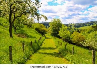 Hill landscape in Germany. Kronenburg in the region of Eifel.