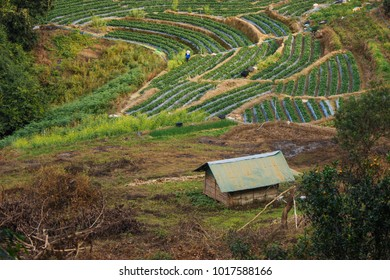 Hill tribe villages and farm at Doi Inthanon, Northern Thailand border