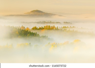Hills with autumn trees in the fog clouds. Foggy morning in a fall valley of Bohemian Switzerland park, landscape of Czech Republic, National Park Ceske Svycarsko. Morning sunset in cold forest.