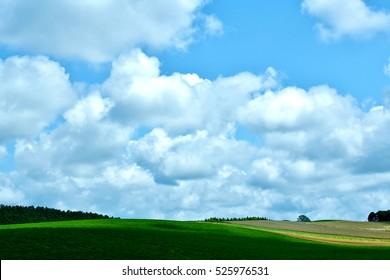 The hills of Biei summer cloud