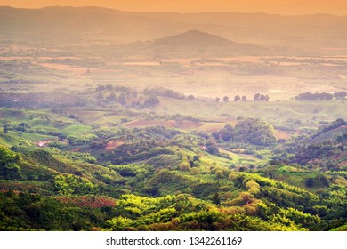 Hills covered in coffee and banana plantations near Buenavista, Antioquia, Colombia. Sunset landscape in Colombia