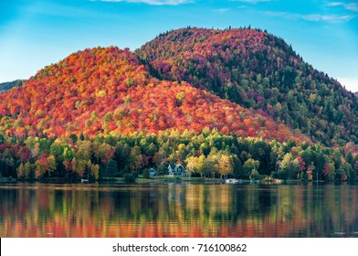 The hills covered with red maple forests behind a wooden house on the shore of a lake  in Quebec, on a beautiful autumn evening.