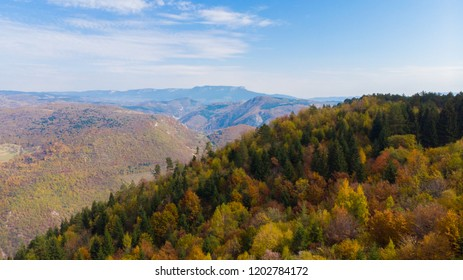 hills in distance and colourful autumn forest