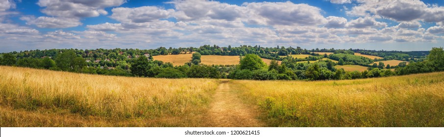 Hills, grassland and trees near Banstead woods in Surrey, England