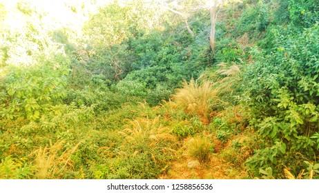 hills imases walpaper Aq