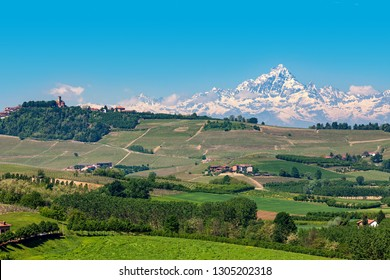 Hills of Langhe with green vineyards as snowy Monviso peak on background under blue sky in Piedmont, Northern Italy.