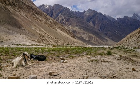 The hills and mountain in the Askole village, K2 Base Camp, Pakistan