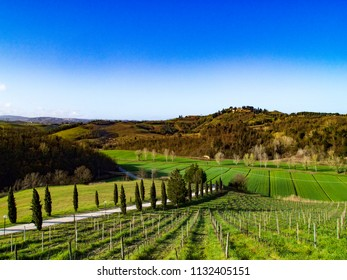 Hills of the Sienese and Florentine Chianti, famous for the viticulture and the production of great wines, rural landscapes and uncontaminated countryside, slopes, cultivated fields, vineyards: the sy